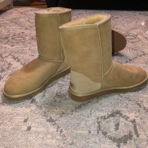 New Cream UGG boots
